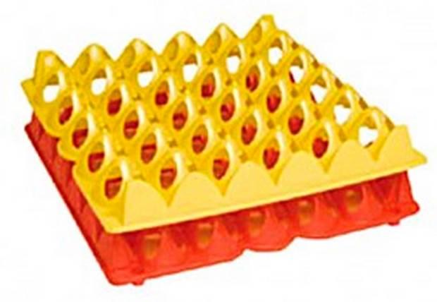 Separador de 30 huevos
