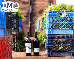 cesta-lechera-uvera-vinicola-ensenada-dmplast-1