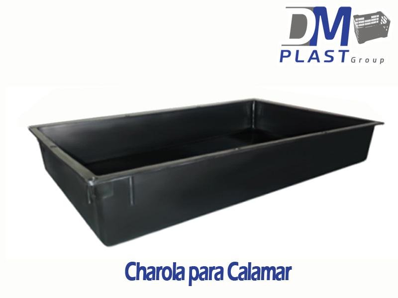 charola_calamar_dmplast