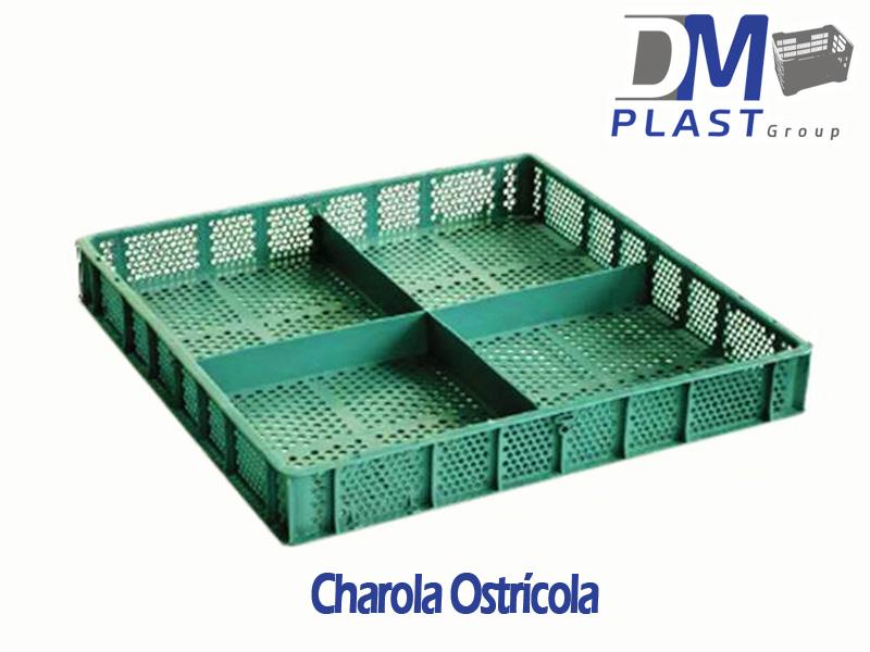 charola_ostricola_dmplast