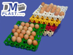 filler_separador_de_huevos_dmplast_3