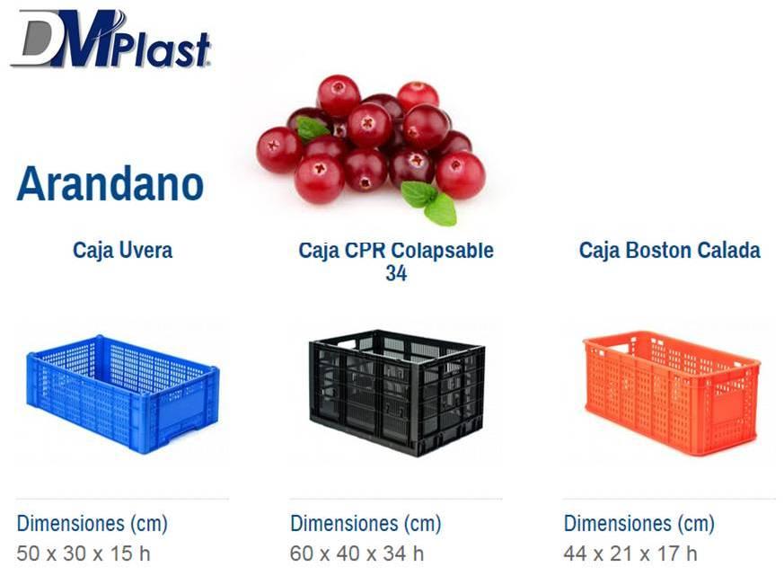 recomendaciones_de_uso_dmplast_arandano_1